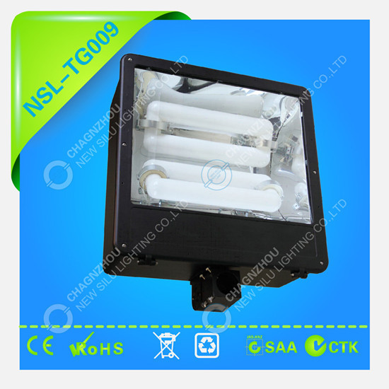 Induction Floodlight Electrodeless Lamp