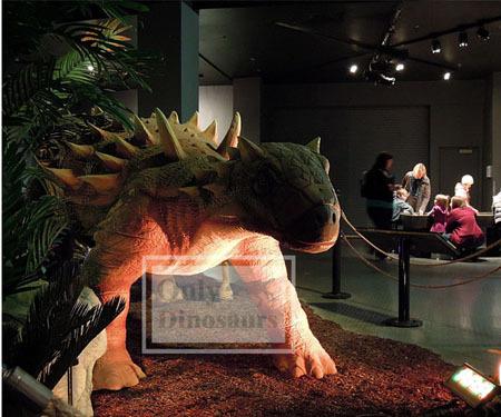 Interactive Animatronic Dinosaur Of Ankylosaurus