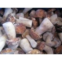 Iqf Frozen Mushroom Boletus Edulis