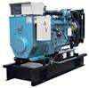Jiata Cummins Diesel Generator Set