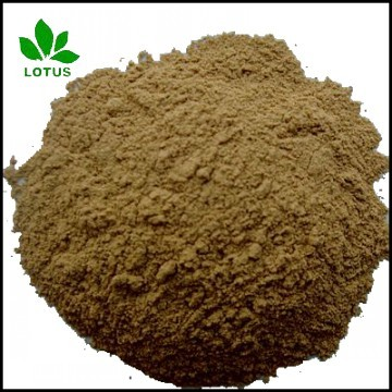 Large Supply Micronized Powder Of Seabird Guano Manure For Organic Fertiliz