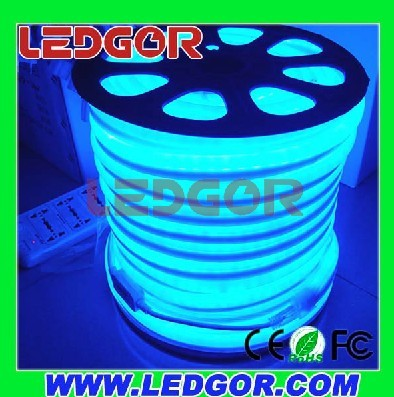 Led Neon Flex 24v Blue
