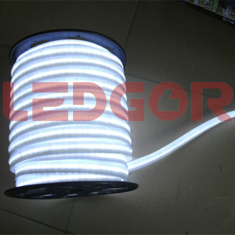 Led Neon Flex Rope White Color 220v 110v 24v 12v