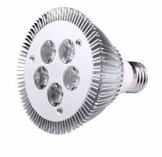 Led Spot Light Par30 5w