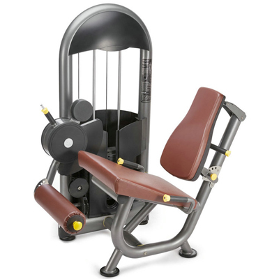 Leg Extension Fitness Equipment Gym