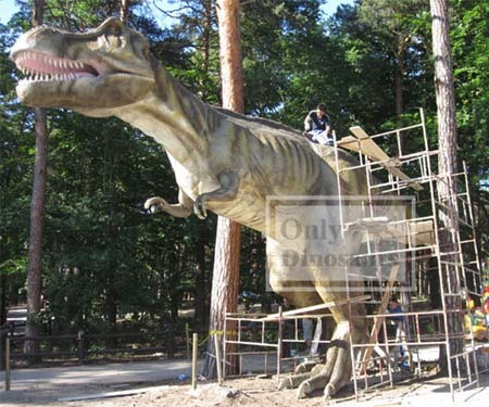 Life Like Animatronic Tyrannosaurus Rex