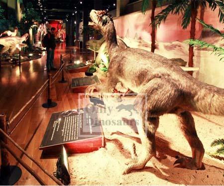 Life Size Animatronic Velociraptor