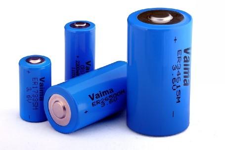 Lisocl2 Battery