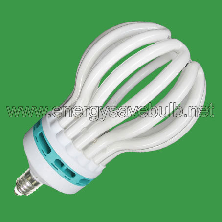 Lotus Energy Saving Bulb Hdek T6 Lh