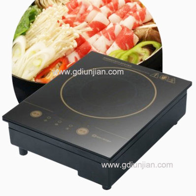Low Voltage Induction Cooker