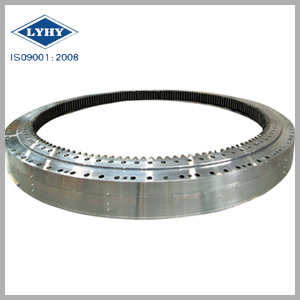 Lyhy Double Row Ball Slewing Ring Bearing
