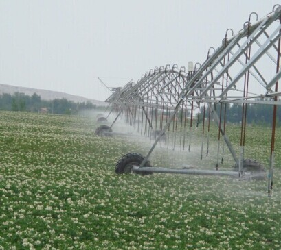 Manufacturer Supply Automatic Agricultural Center Pivot Irrigation System F