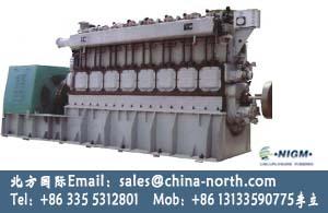 Methane Generator Set