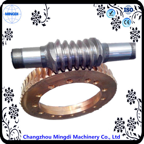 Mini Differential Worm Gear Transmission Parts For Electric Motor