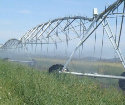 Mobile Sprinkler Irrigation System Center Pivots Equipment For Sale