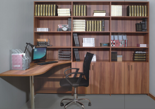 Modern Style Office Bookcase