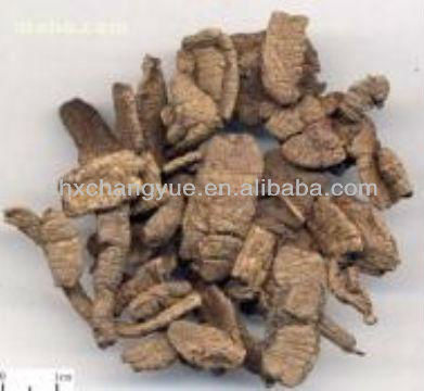 Morinda Officinalis Root Extract Bacopin
