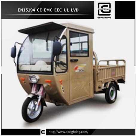 New Design Pedal Bri R06 Good Cargo Tricycle Passenger