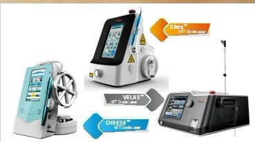New Vet Therapy Laser