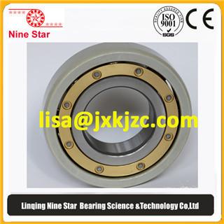 Nine Star 6218m C4vl0241 Insulated Bearings