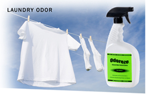Odoreze Eco Laundry Odor Eliminator Additive Makes 64 Gallons