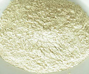 Onion Powder Dry Dehydrated