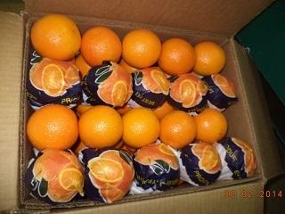 Orange Varieties Of Oranges 1 Valencia 2 Navel