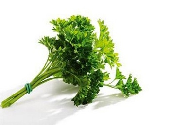 Parsley Seed Extract