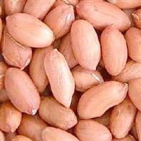 Peanut Skin Extractpeanut Extract
