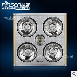 Pinsen Bathroom Celling