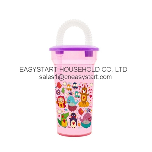 Plastic Straw Cup Water Bottle