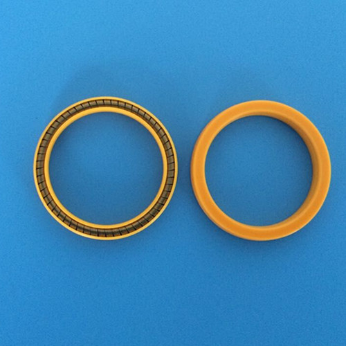 Pneumatic Seals For Lng Injection Guns