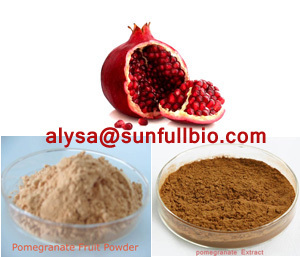 Pomegranate Extract Polyphenols Ellagic Acid