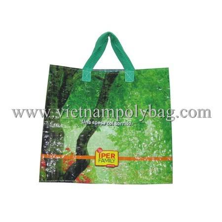 Pp Woven Carrier Shopping Bag