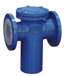 Ptfe Lined Blue Type Strainer