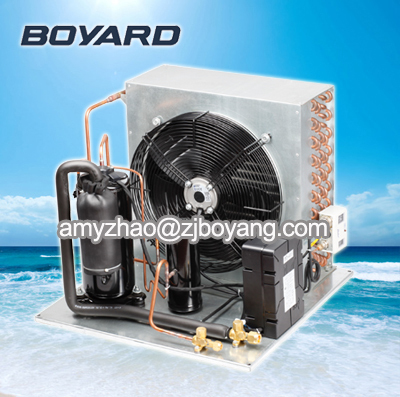 R22 Vertical Rotaty Compressor For Condensing Unit Freezer Spare Parts