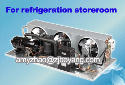 R404a Condensing Unit For Deep Freezer