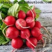 Radish Red Natural Pigment