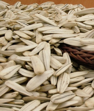 Roasted Raw Turkish White Sunflower Seeds 6 5mm