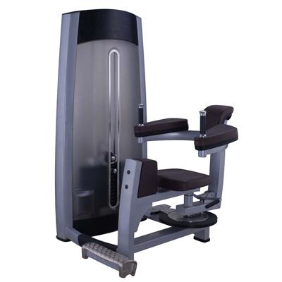 Rotary Torso Fitness Equipment Gym