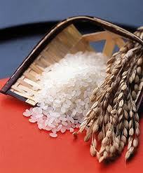 Round Rice High Quality