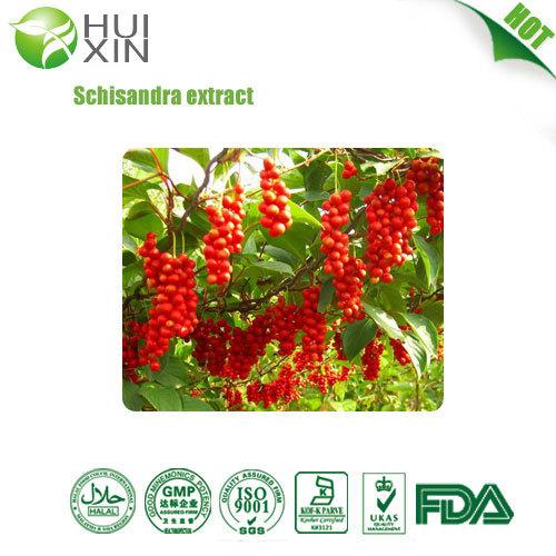 Schisandra Extract Chinensis P E