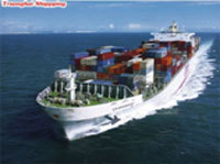 Sea Freight Qualified Affordable Safe