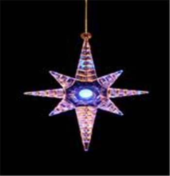 Sea Star Decoration Xrst004ss