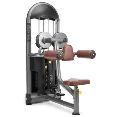 Seated Lateral Raise Fitness Equipment Gym