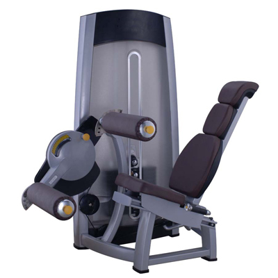 Seated Leg Curl Fitness Equipment Gym