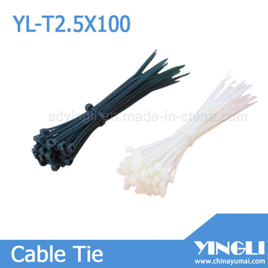 Self Locking Nylon Cable Tie Yl T2 5x100mm