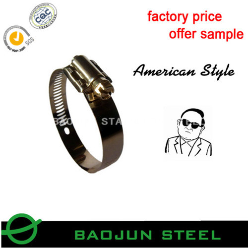Ss304 American Type Stainless Steel Hose Clamp