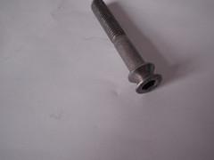 Stainless Steel Non Standard Screw
