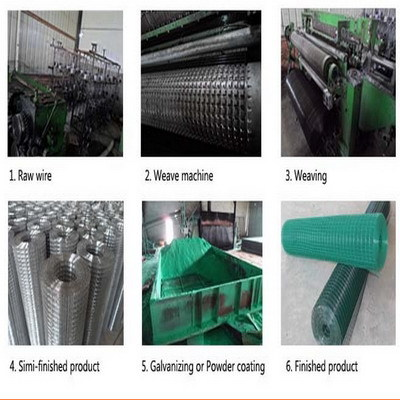 Strong Anti Rust Iron Wire Mesh Pvc Petwire Nets Vinyl Coated